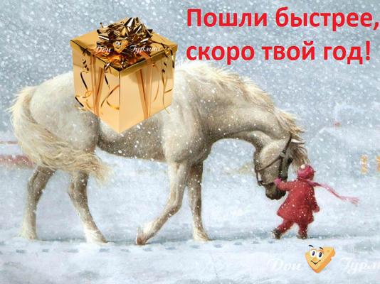 Доставка пиццы Красногорск Дон Гурман